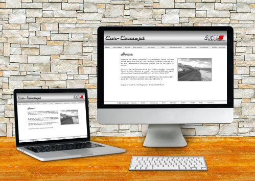 Car-Conzept <small>Website</small>
